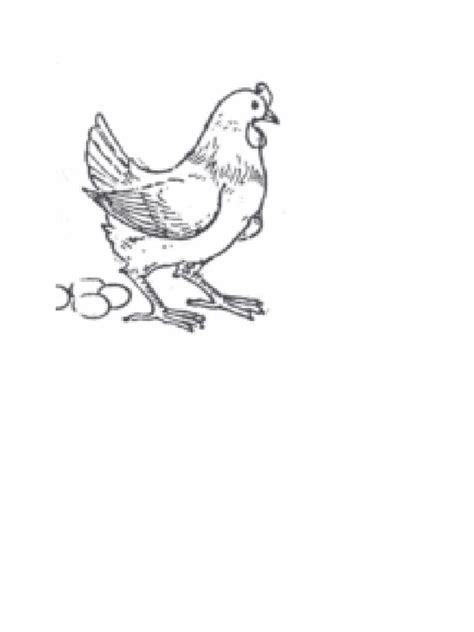 +42 Sketsa Gambar Binatang Untuk Kolase   Gudangsket
