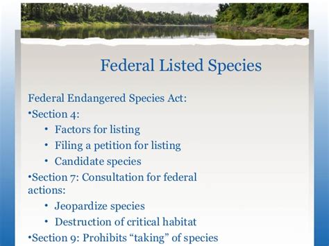 section 7 endangered species act musseling through state and federal regulations on