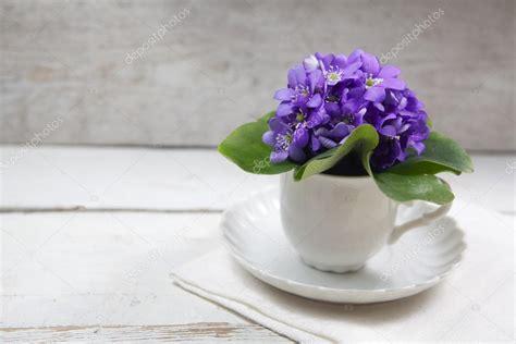 fiori violette foto fiori di violette sul tavolo di legno foto stock 169 vetre