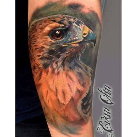 full color realistic hawk tattoo by evan olin tattoos