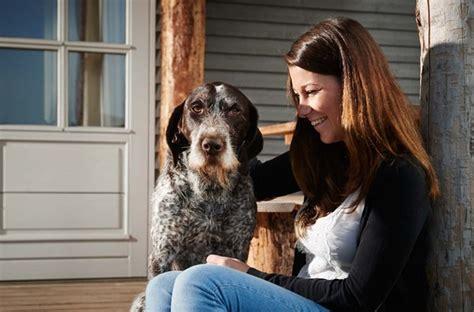 wohnung mit hund mein urlaub mit hund ferien wohnung haus pension hotel