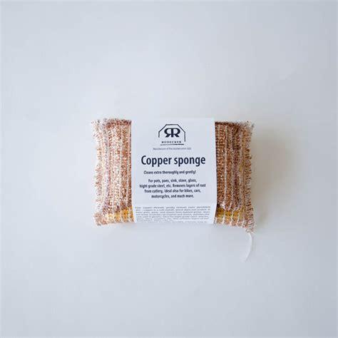 Set Of 2 Sponge copper sponge set of two