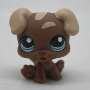 lps boxer puppy 1052 littlest pet shop brown boxer puppy blue lps ebay