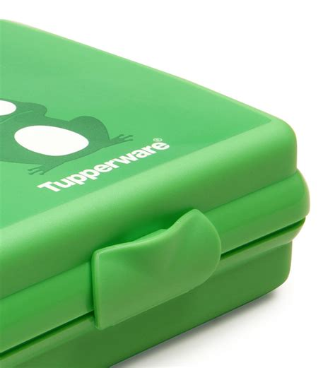 Tupperware Fruit Keeper 1pc Promo tupperware 1 pc frog sandwich keeper 300 ml by tupperware lunch boxes kitchen