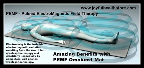 Pulsed Electromagnetic Field Therapy Mat by Pemf Electrosmog Pulsed Electromagnetic Omnium1 Mat