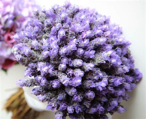 bouquet di fiori per sposa i fiori giusti per un bouquet da sposa color lavanda