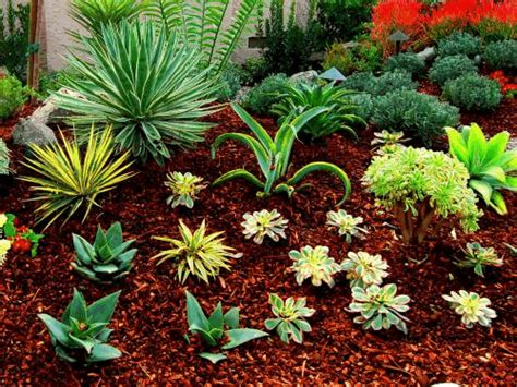 american landscape design and installation drought