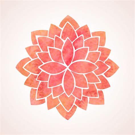 posizione fiore di loto fiore di loto storia caratteristiche e simbologia nelle