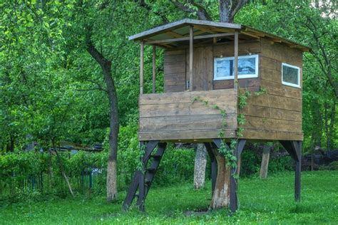 building a tree house everything you need to know building a tree house everything you need to know