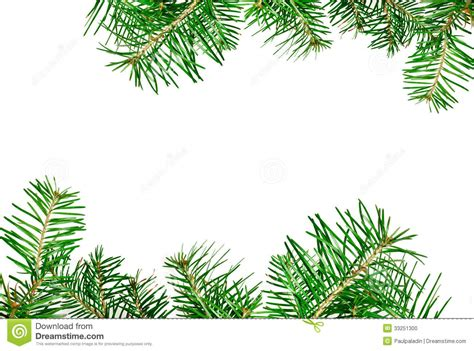 card frames templates pine boughs border stock photo image 33251300