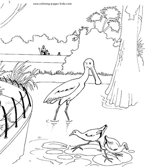 educational coloring pages zoo animals zoo birds color page
