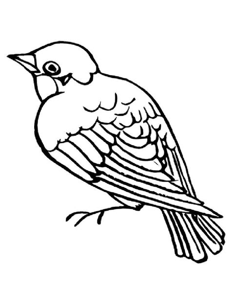 coloring page of house sparrow sparrows birds coloring pages 15 sparrow bird coloring page