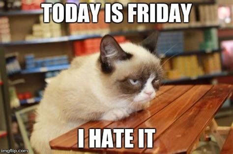 Grumpy Cat Friday Meme - grumpy cat table viral memes imgflip