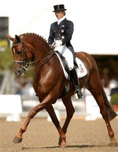 Saddle Up A Liza Wilcox Mystery 48 best images about chevaux dressage on