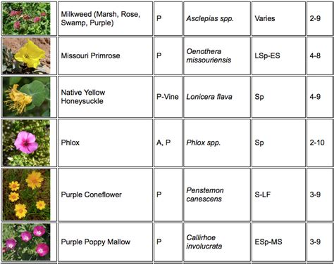 herb care chart native nectar plants for butterflies welcome wildlife