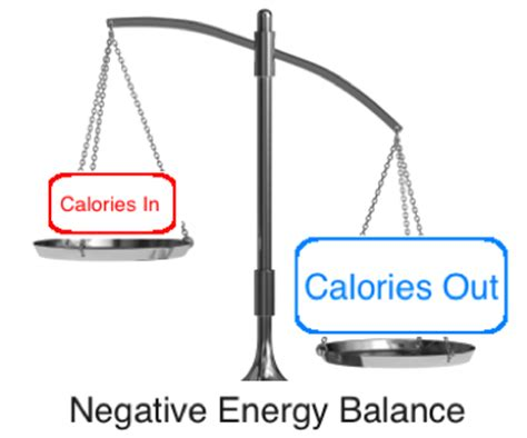 what is negative energy the principles of a healthy diet custom kinetics