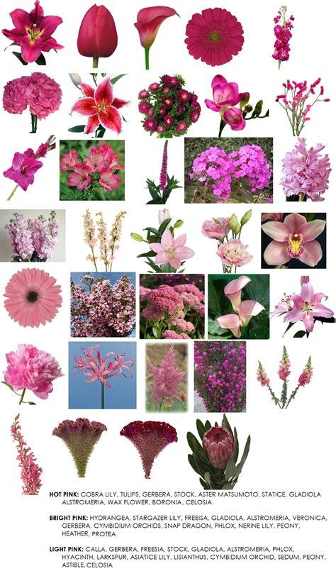 list of flowers color modern petals blog