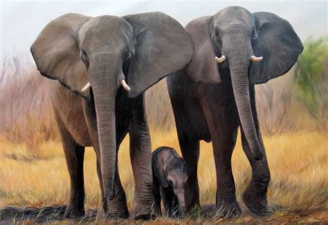 painting elephant elephant painting how to draw and paint animals