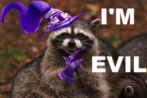 Raccoon Excellent Meme - excellent meme raccoon