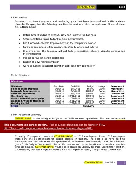 Advertising Agency Business Plan Sle Executive Autos Post Advertising Agency Business Plan Template
