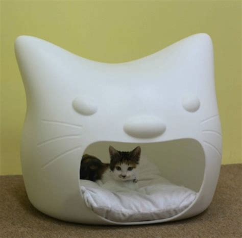 poop in bed funny cat bed and stool in one digsdigs