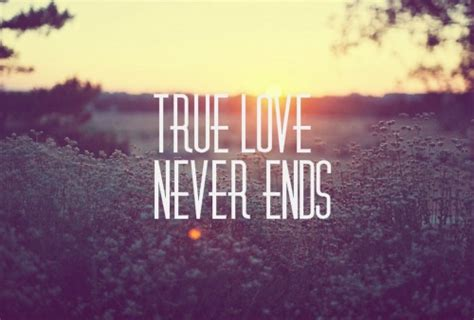 imagenes true love true love never ends pictures photos and images for