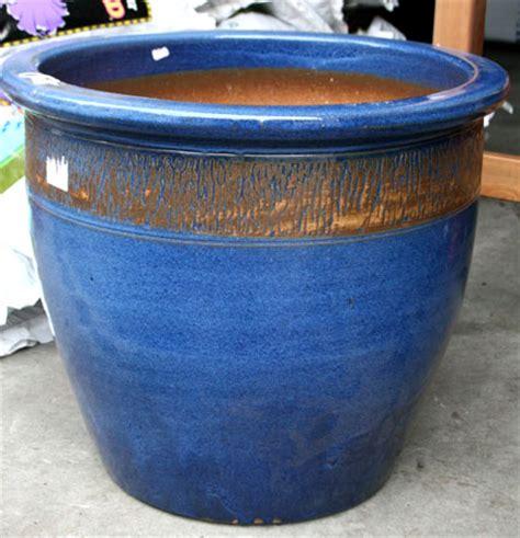 Ceramic Planter Pots For Sale by Ceramic Plant Pots Blue Reversadermcream