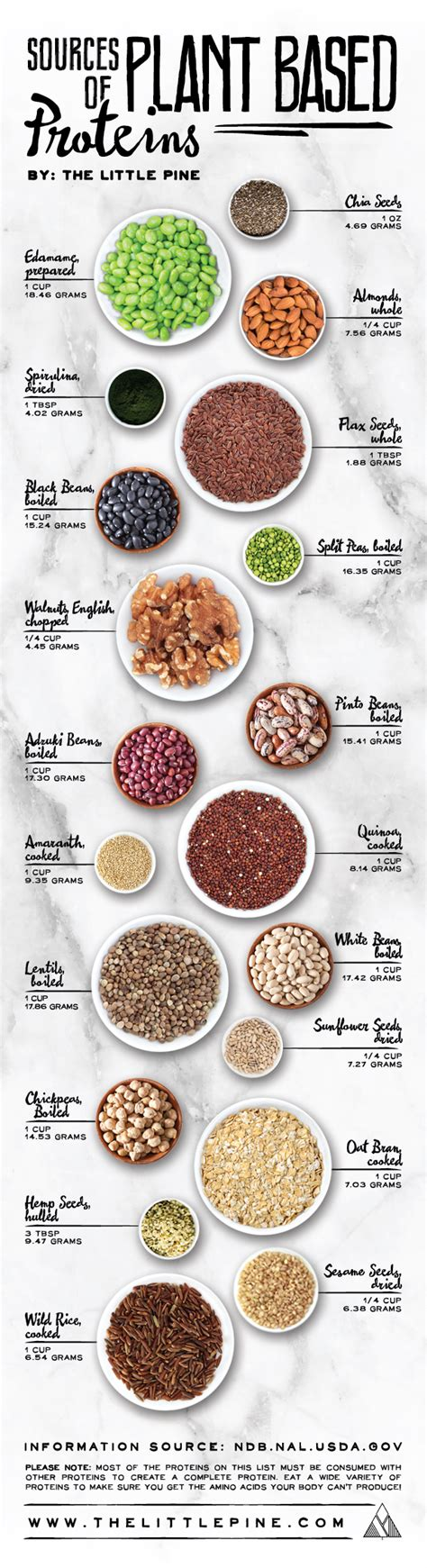 whole grains plant based diet plant based protein sources the pine