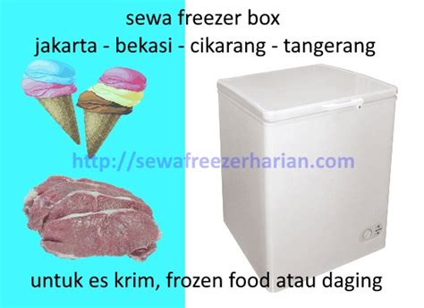 sewa freezer box untuk es krim sewa freezer harian