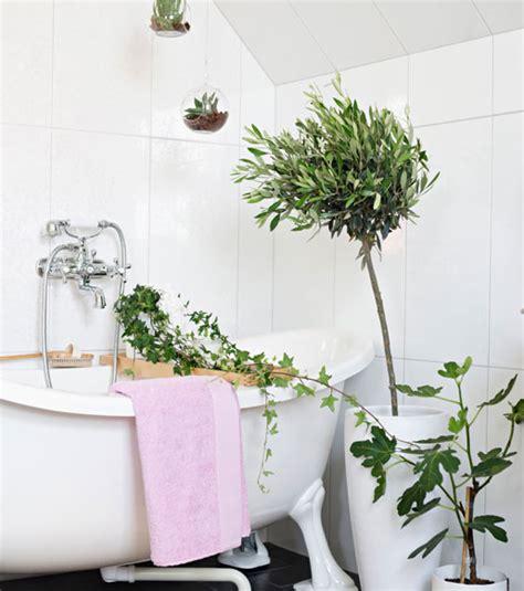 vasi alti per piante vasi di plastica colorati per piante vasi alti per piante