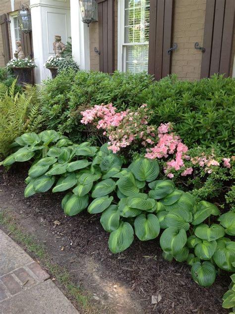 Hosta Garden Ideas Hosta Bed Garden Ideas Pinterest
