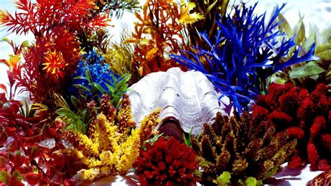 How To Make Coral Out Of Paper - the last coral reef of