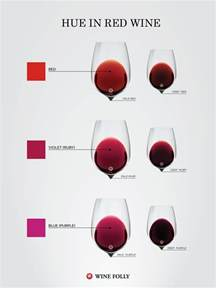 color wine what color tells you about a wine wine folly