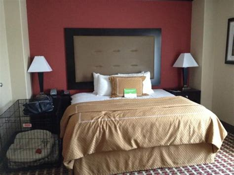 puppy crate in bedroom or not bedroom with room for dog crate picture of la quinta inn