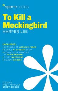to kill a mockingbird themes analysis sparknotes to kill a mockingbird