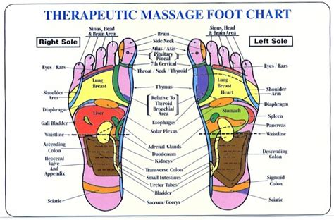 Reflexology And Detoxing by Asia Worldwide Wholesale