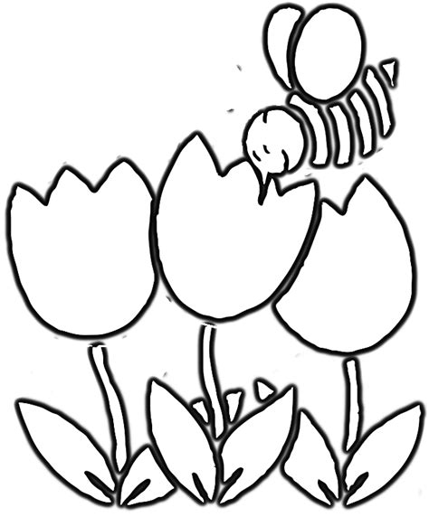 coloring pages of flowers and bees bee and flower coloring page cfxq