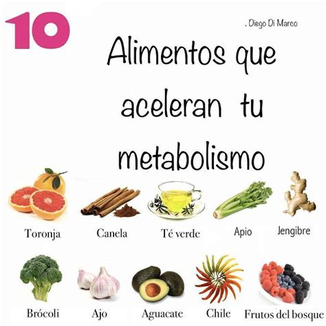 que alimentos aceleran el metabolismo noor canal espiritual m 233 dium el metabolismo alimentos