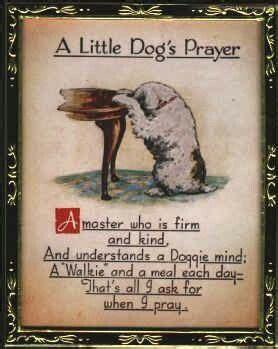 st francis prayer  pet death  bcause