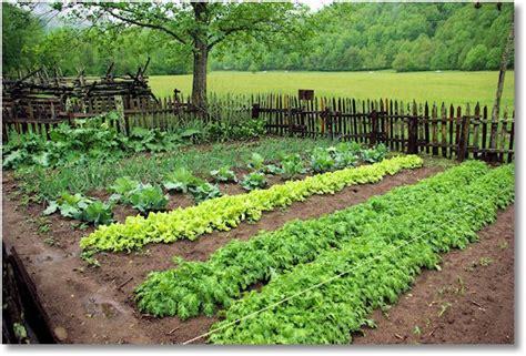 Garden Farms by Garden At Mountain Farm Museum