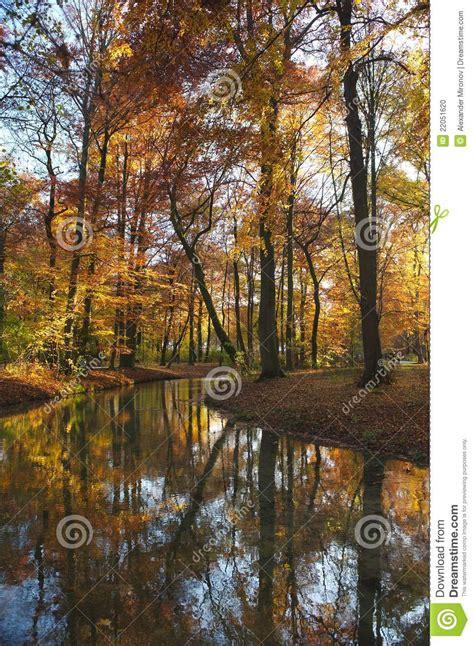 ruscello in giardino ruscello di autunno fotografia stock immagine di giardino