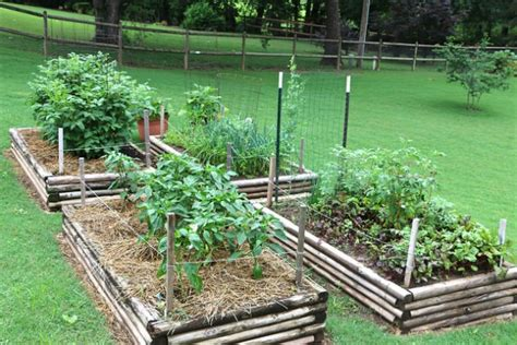 10 Tips On Vegetable Gardening For Beginners Family Vegetable Gardens For Beginners