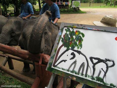 painting elephant elephants painting at the thai elephant conservation center