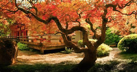 imagenes sobre japon viajes a jap 243 n exclusivos y a medida nuba