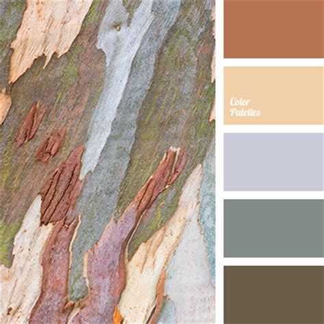 bark color color palette ideas