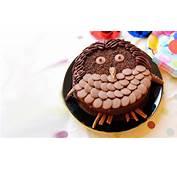 Chocolate Owl Birthday Cake Recipe  Kidspot