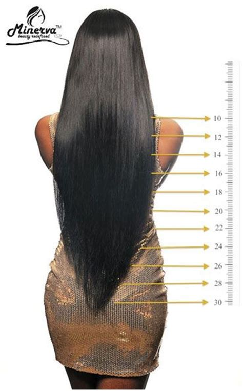hair length chart hair length chart hair lengths and charts on pinterest