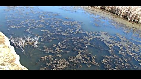Images Of Air Pollution And Water Pollution