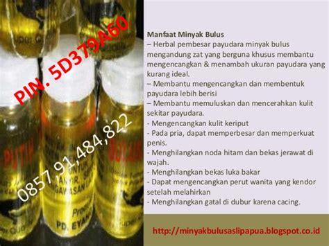 Minyak Bulus Untuk Wajah khsiat minyak bulus putih khsiat minyak bulus putih untuk