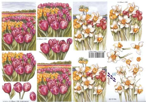 Flower Decoupage - tulip daffodil flowers in pots 3d decoupage sheet